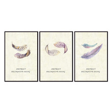 Factory wholesale (No Framed) Feather poster series Canvas Print On Printing Wall Pictures 12YM-A-647