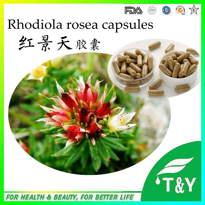 Online Get Cheap Rhodiola Herb Aliexpresscom Alibaba Group