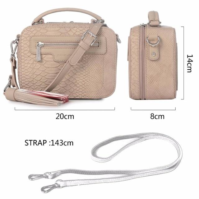 AiiaBestProducts David Jones Name Brand Crossbody Bag 2