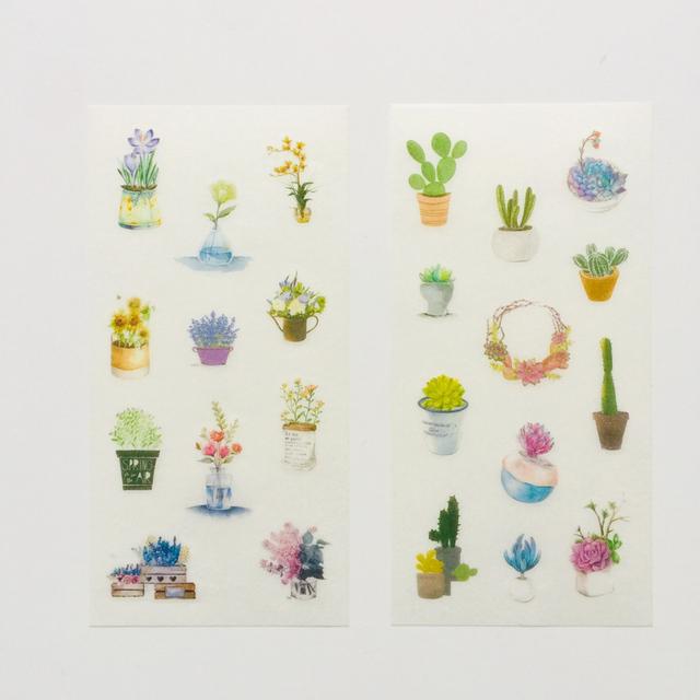 Cactus Washi Paper Adhesive