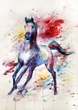 5D DIY Watercolor Horse Diamond Painting Full Square Embroidery  Mosaic Animals Paintings Rhinestones Needlework