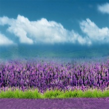 Laeacco Blue Sky Flowers Lavender Field Scenic Baby Photography Backgrounds Customized Photographic Backdrops For Photo Studio
