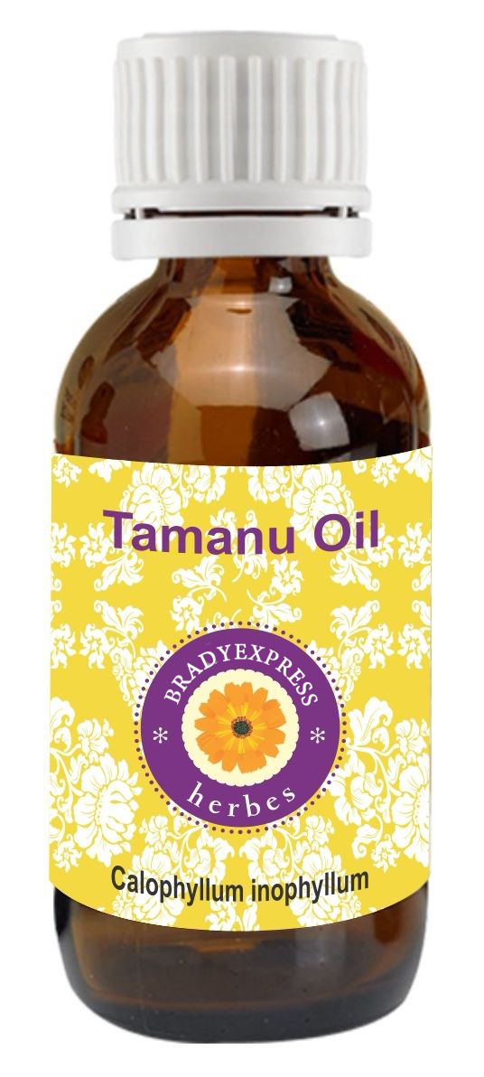 FRee Shipping Pure Tamanu Oil Calophyllum Inophyllum 100% Natural Cold Pressed Therapeutic G  5ML