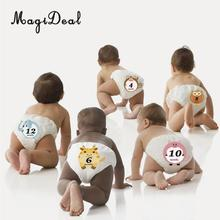 MagiDeal Cute Animal Baby Monthly Milestone Sticker Baby Shower Photo Prop 1-12 Month Kids Baby Shower Party Birthday Decor