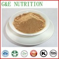 GMP Certified Manufacturer Supply High Quality Tongkat Ali Extraction   100g