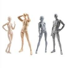 アニメ Archetype 彼彼女フェライトフィグマ可動ボディ Feminino くんボディちゃん Pvc 恋人アクションフィギュアモデルのおもちゃの人形グッズ