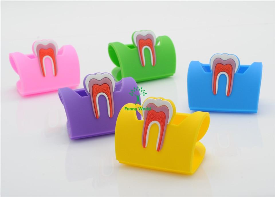 dental 5 molar em forma de borracha titular do cartao de nome caso titular expositor para