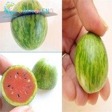 Thumb watermelon seeds mini watermelon Peipujinun 30pcs/bag vegetable seeds indoor plant Thumb watermelon seeds mini watermelon