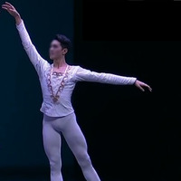 Customized Man White Ballet Dance Tunic Jackets, Prince Jacket professional Classical Ballet Man Dance Costumes Retail Wholesale