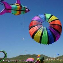 Летающие игрушки 3 м с одиночной линией мягкий большой воздушные листовые змеи из нервущейся крепкой ткани нейлона продажи windsock надувной змей фестиваль