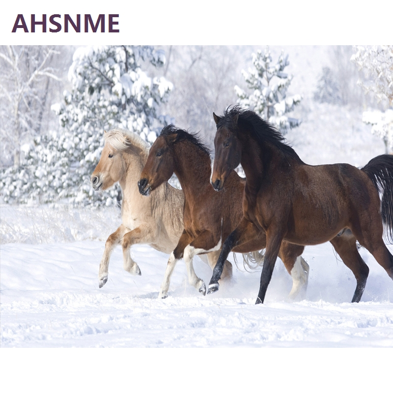 AHSNME Portray Studying Semi-finished Handmade Wall Artwork Image Snowfield Horse DIY Digital Oil Portray Residence Decor 884 Portray & Calligraphy, Low-cost Portray & Calligraphy, AHSNME Portray Studying Semi completed...