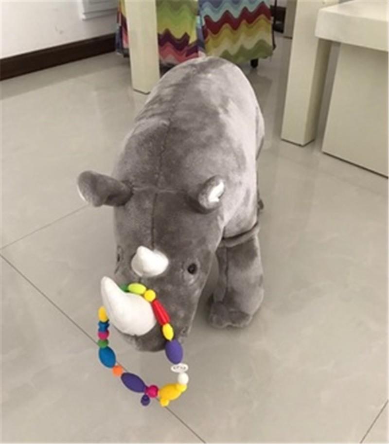 Rhinocero13