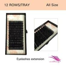 Free shipping 0.05mm 2D/3D/6D nature&soft J/B/C/D curl All length eyelash extension 5 trays/lot