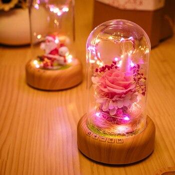 LED Night lamp decorate dream bluetooth voice Speaker Christmas Ever-fresh flower creative music box rechargable desk light gift dream box