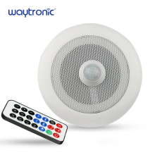 In Ceiling Small PIR Motion Sensor Amplifier Speaker for Store Doorway Welcome Alarm Voice Broadcast Bank Safety Prompt