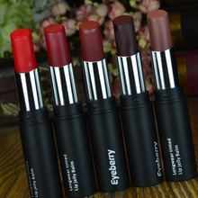 brand matte lipstick health lipstick lips batom mate Waterproof lip gloss red lip Cosmetics makeup purple lipstick