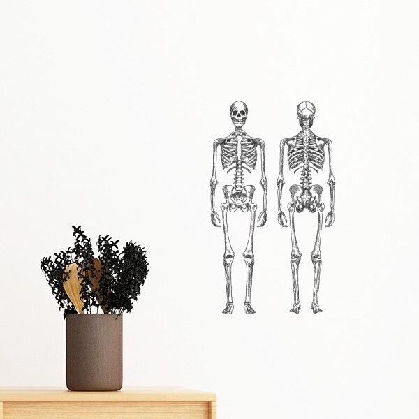 Медицинская наука Скелет людей Bone отойти эскиз съемные стенки Стикеры Книги по искусству наклейки Фреска DIY обои для комнаты