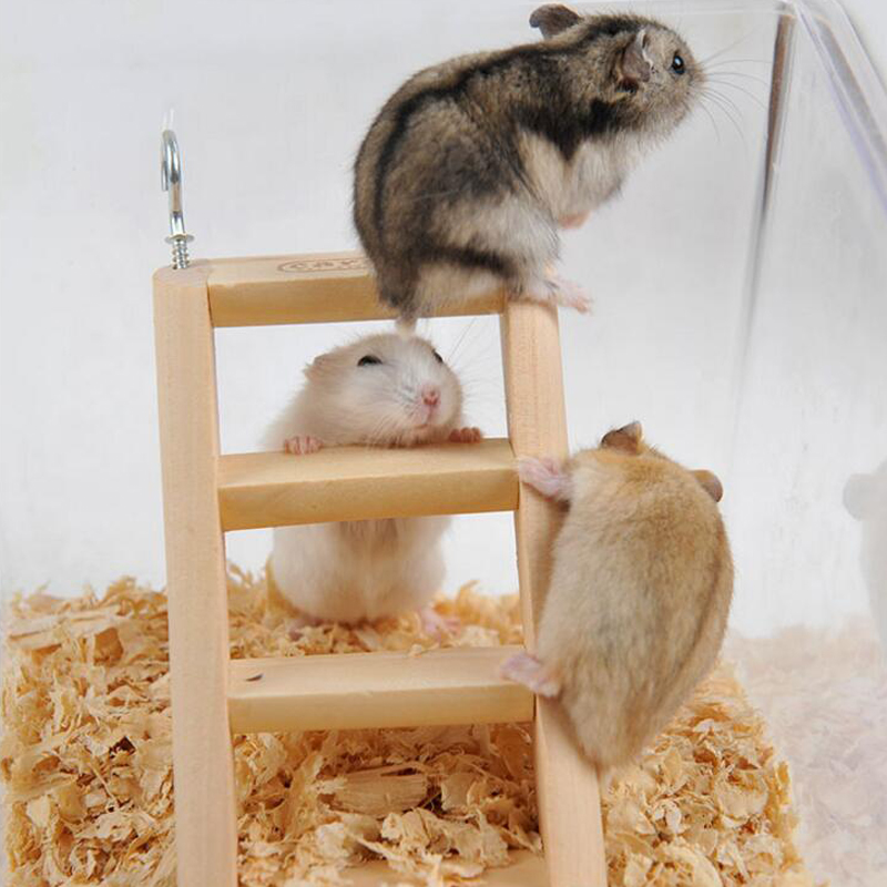 Hedgehog Pet Price >> Hamster Natural Wooden Ladder Small Animals Pets Rat ...