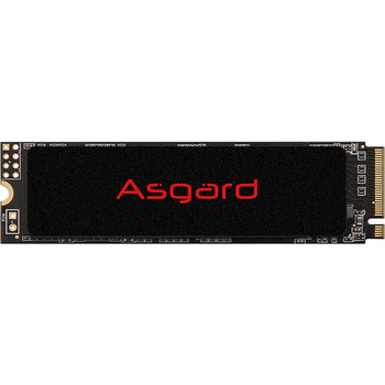 Asgard M.2 SSD PCIe3 X4 250gb 500gb 1T ssd m.2 NVMe pcie M.2 2280 Internal Hard Disk laptop 1