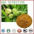 GMP Certified Fabricante Abastecimento Natural Extrato de Noni