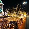 Outdoor 100 M 500LED Fee String Licht Wasserdicht Outdoor Vorhang Weihnachten Licht 8 Modi Girlande Dekorative Lichter UNS/UK /AU-in Festtagsbeleuchtung aus Licht & Beleuchtung bei