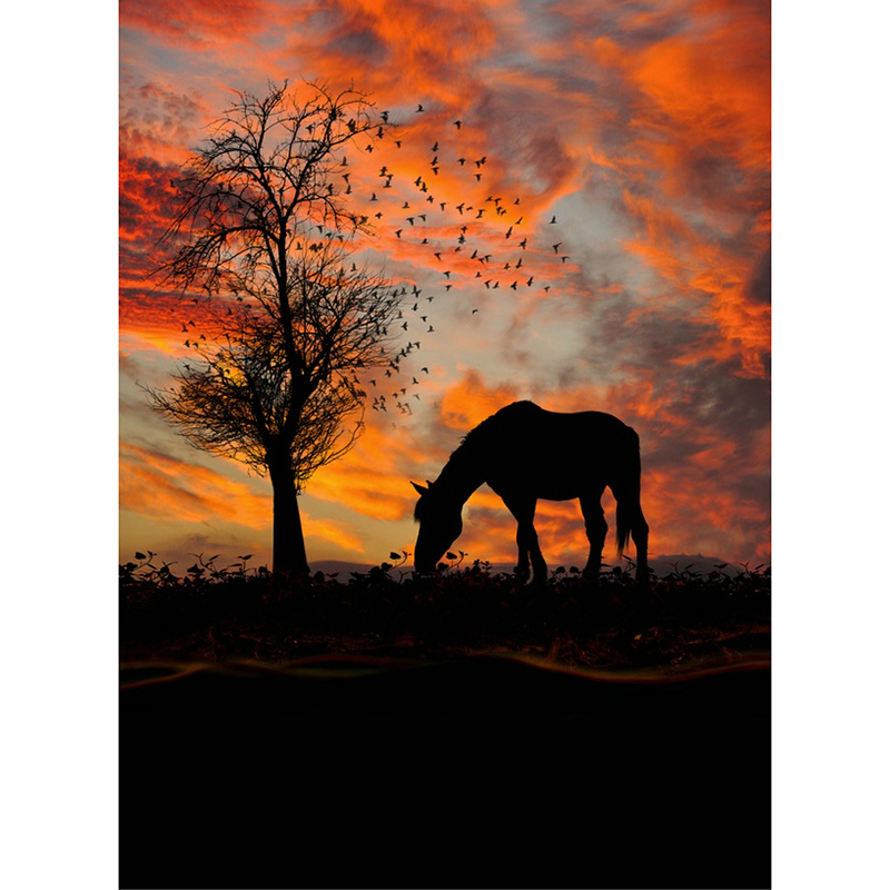 horse sunset pictures 3D Diamond Embroidery DIY Needlework Diamond Painting Full Drill S ...