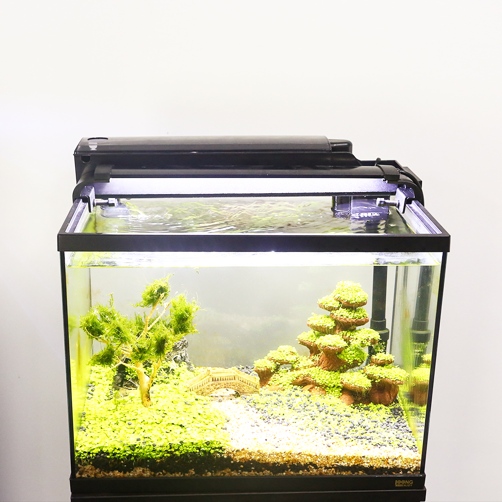 Aquarium Aquarium 3 en 1 Kit Aquarium avec Aquarium en verre, filtre et affichage de lumière LED - 5