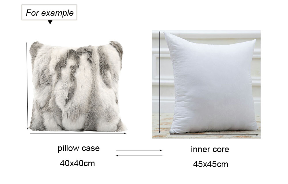 pillow case and core size 2