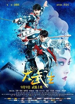 《大武生》2011年中国大陆剧情,动作,爱情电影在线观看