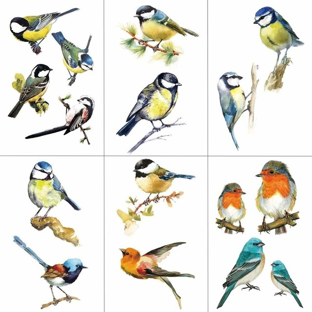 HXMAN Colorful Sparrow Birds Women Temporary Tattoo Sticker Tattoos for Waterproof Kids Body Art Tatoo 9.8X6cm A-185