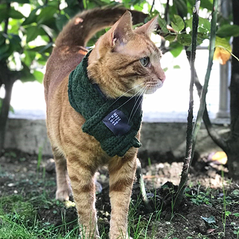 Cozy Warm Cat Scarf Pet Accessories For Cats Pet Grooming Pet Products Cat Supplies Collars 1b25 #2
