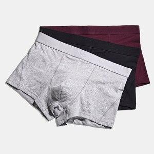 Image 5 - 4 ピース/ロット男の下着ボクサーメンズ Boxershorts 男性パンツボクサーオム Calzoncillos 綿のパンティーゆるいプラスサイズ S XXXL