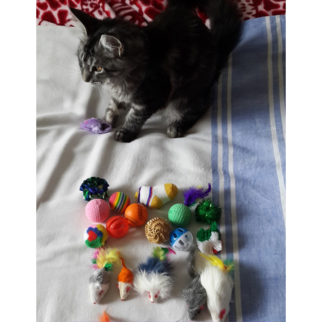 Westrice 18 Variety Small Mini Playing Mouse Toys Gift for Cats Dogs Kitten Value Pet Toys Packs,Mouse,Ball,Socks
