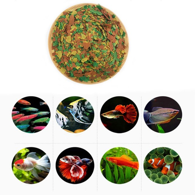 Aquatic Pet Highly Nutritious Fish Food Color Enhancing Food For Fishes Goldfish Aquarium Tropical Fish Tanks Grow Fast Healthy Supplies