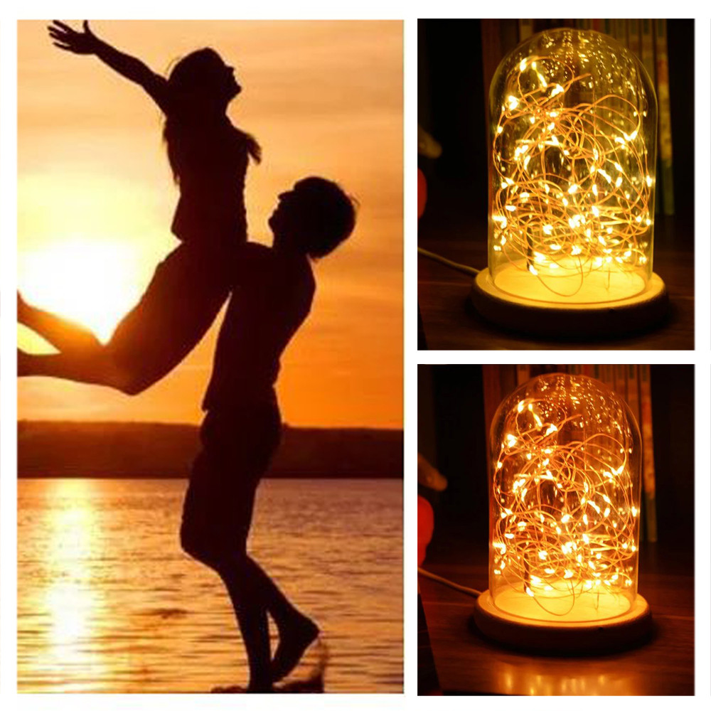LED Fire Tree Silver Flower Romantic Glass Cover Bedroom Desk Night Light Lamp 2018 Xmas Christmas decor String Fairy Lights NEW