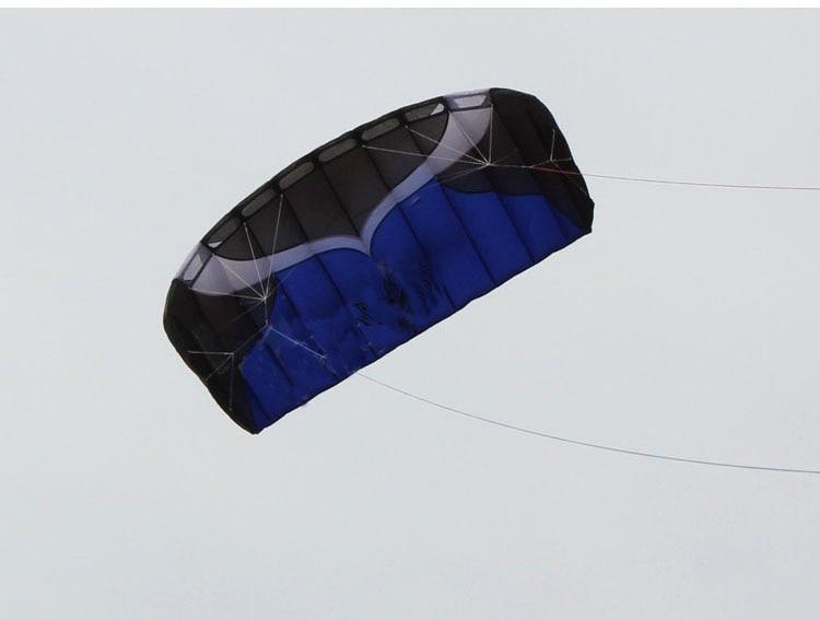 Cerf-volant Parafoil double ligne professionnel 2m avec ligne de tresse de voile Kitesurf plage de sport - 4