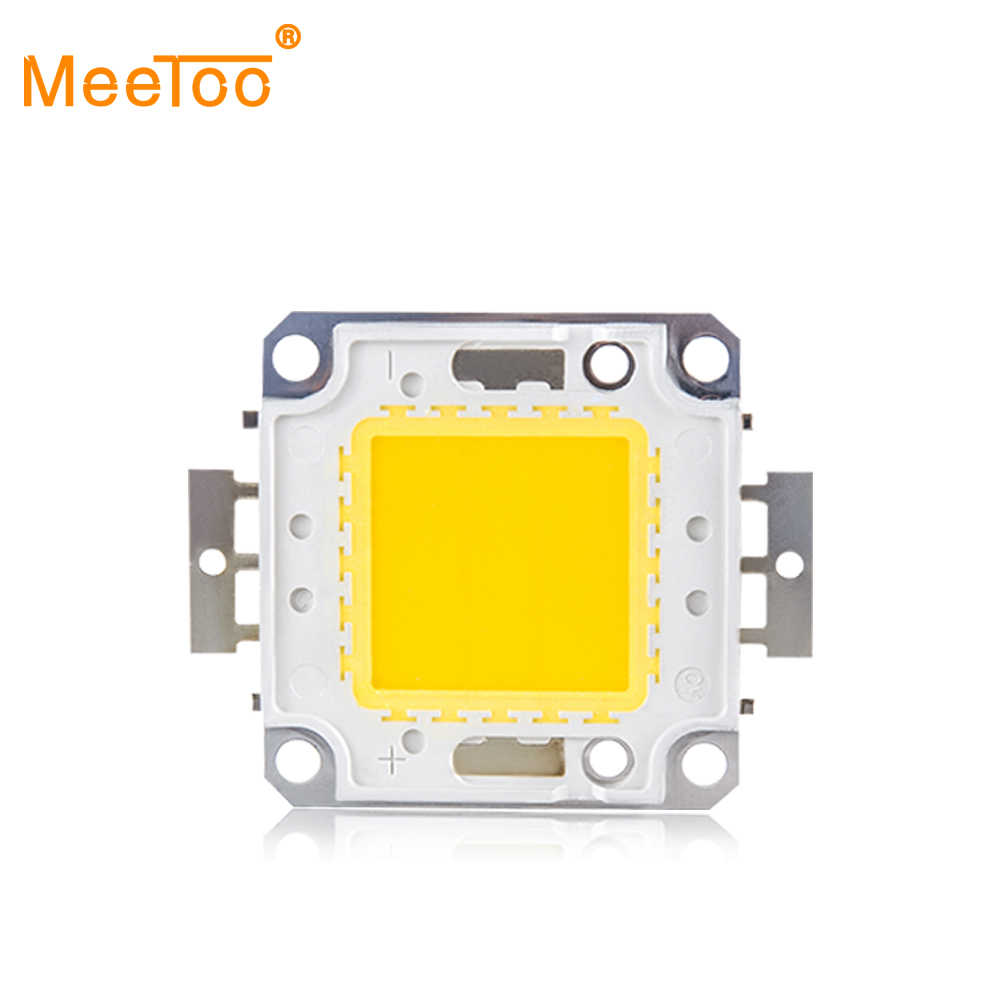 LED Integrated Spotlight Bulbs COB 10W 20W 30W 50W 100W LED Lamp Chip SMD Outdoor Lighting Warm Cool White Diodes DIY Floodlight