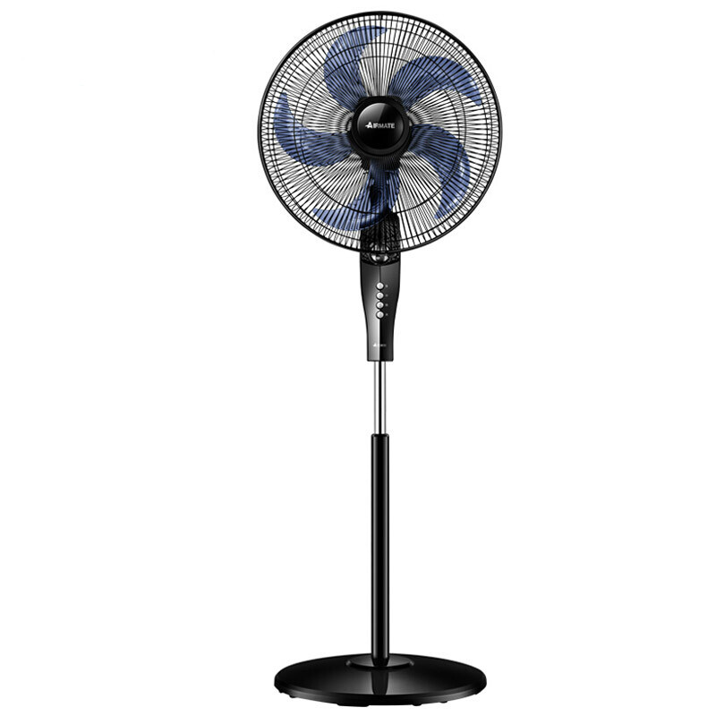 Household Electric Fan Floor Fan Five-leaf Silence FSW65T2-5Household Electric Fan Floor Fan Five-leaf Silence FSW65T2-5