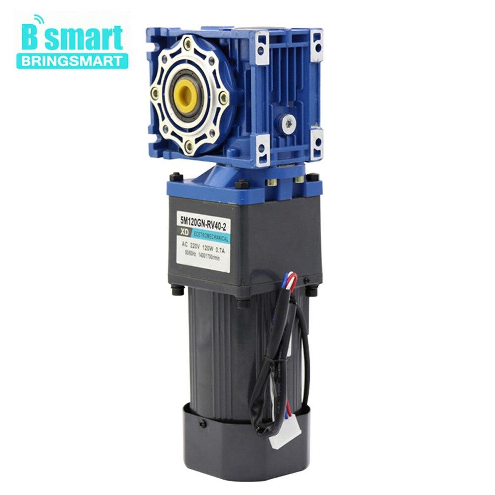BringSmart RV40 2 220 мотор с питанием от источника переменного тока с напряжением в 120W Регулируемый Скорость двухступенчатый червячный Шестерни мо
