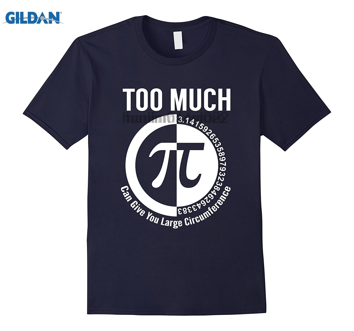 GILDAN Too Much Pi Can Give You A Large Circumference Math T Shirt