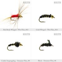 LGFM 120pcs Fly Fishing Dry Flies Wet Flies Assortment Kit with Waterproof Fly Box for Trout Fishing