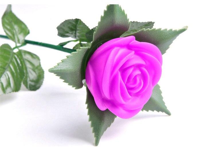 Nova ruža romantični otvoreni dvorište vrt put put tulipani bar - Rasvjeta za odmor - Foto 5