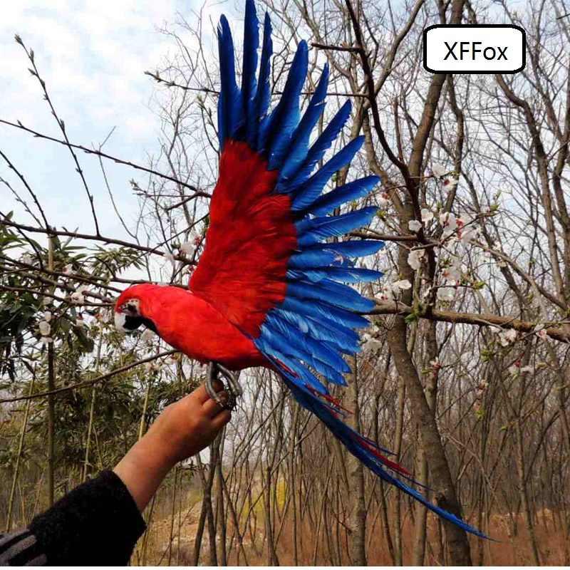 ビッグ実生活赤 & 青羽オウムモデル泡 & フェザーグレー足シミュレーションオウム鳥ギフト約 45 × 60 センチ xf0269