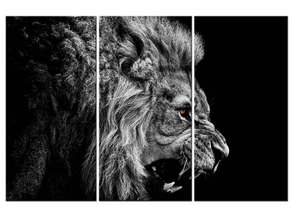 3 pieces / set HD Printed Animal Male Lion Wall Art Painting Canvas Print Room decor print poster Picture Canvas
