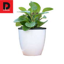 Dehomy 13*13.7 Flower Pots Automatic Suction FlowerPot Multi-meat Plant Resin Hydroponic Potted Large Round Plastic Flower pots