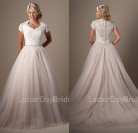 Champagne Lace Tulle Ball Gown Modest Wedding Dresses 2019 Sleeves Beaded Vintage Church Bridal Gowns High Neck Bride's Dress