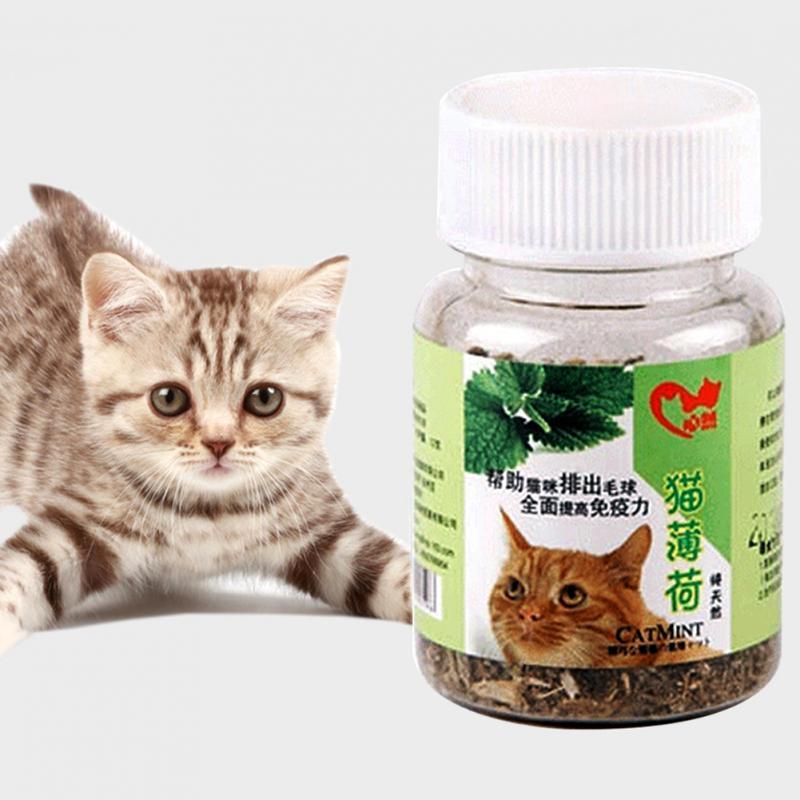 12g Natural Pet Cat Mint Fresh Organic Dried Catnip Healthy Cat Supplies Cat Mint
