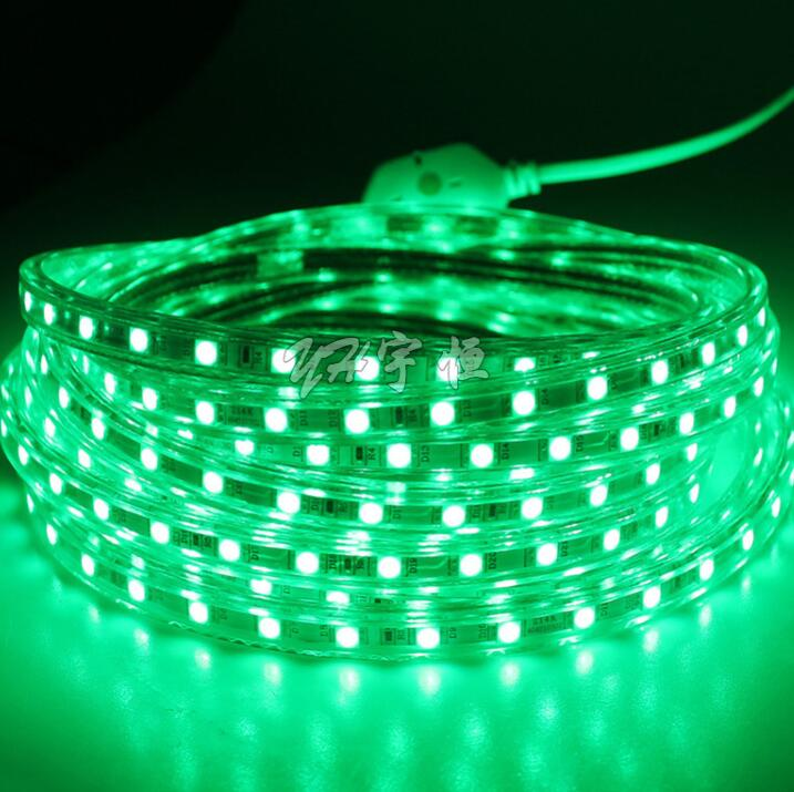 AC220V LED Strip Light SMD 5050 60leds/m IP67 Waterproof flexible led tape with ON/OFF switch 1M/2M/3/4/5/6/7/8/9/10M
