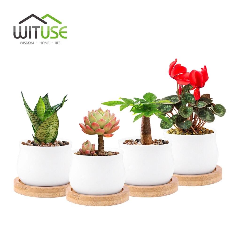 4X Modern Mini white ceramic shallow flower pot with bamboo tray zakkar succulent ceramic pot desktop Balcony bonsai pot pottery