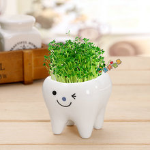 Cute tooth pot vase creative ceramic cartoon tooth flower pot succulent flower pot home decoration crafts dental clinic gift toy